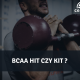 BCAA hit czy kit ?